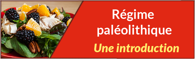 régime paléolithique