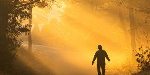 Mode de vie paléo : Pourquoi j'ai fait ces 3 changements