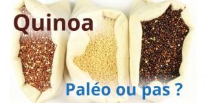 Manger du quinoa est-il compatible avec le régime paléo ?